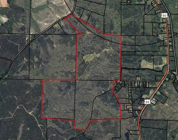 673 Dennis Creek Road, TALBOTTON, GA 31827 (MLS #183045) :: Kim Mixon Real Estate
