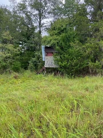 0 Lake Talbot Road, BOX SPRINGS, GA 31801 (MLS #184487) :: Haley Adams Team