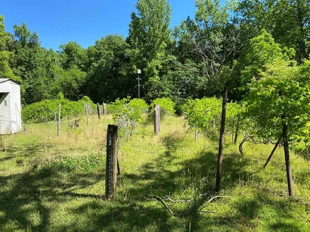 8787 Veterans Parkway, COLUMBUS, GA 31909 (MLS #185299) :: Kim Mixon Real Estate