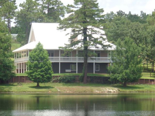 4054 Lambert Lake Estates, BOX SPRINGS, GA 31801 (MLS #166882) :: Bickerstaff Parham