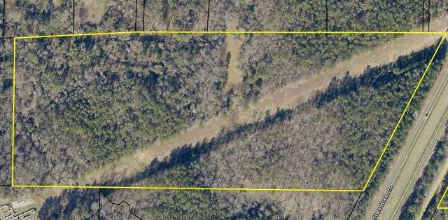 0 Warm Springs Road, MIDLAND, GA 31820 (MLS #178771) :: Kim Mixon Real Estate