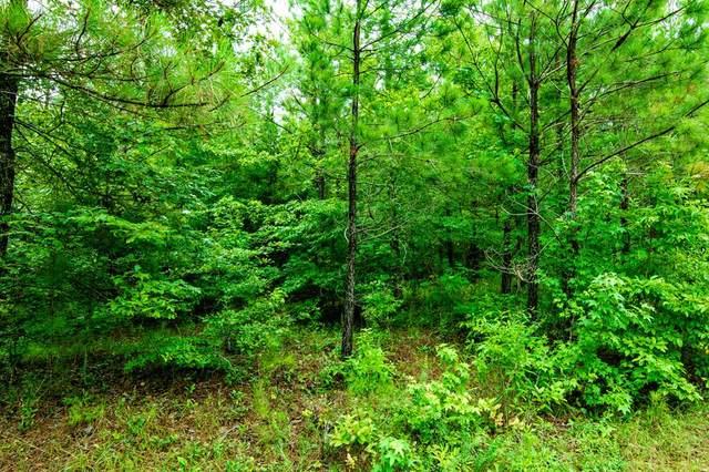 0 Kings Gap Road, SHILOH, GA 31826 (MLS #179795) :: Kim Mixon Real Estate