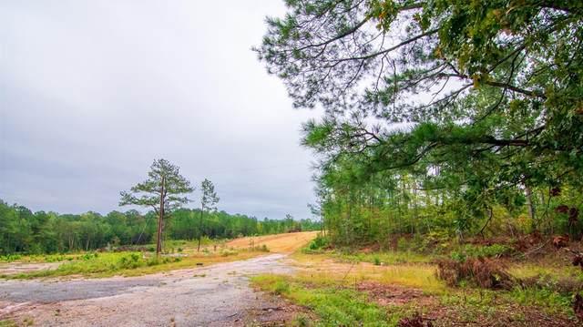6890 Lickskillet Road, HAMILTON, GA 31811 (MLS #181417) :: Kim Mixon Real Estate