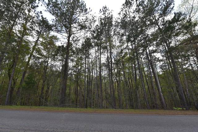 Lot 40 Lee Road 0965, VALLEY, AL 36854 (MLS #184845) :: Haley Adams Team