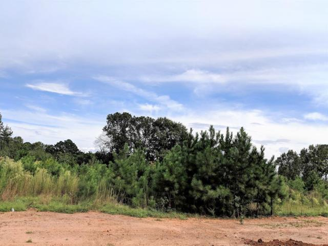 Lot 16 County Line Road, MIDLAND, GA 31820 (MLS #164589) :: Matt Sleadd REALTOR®