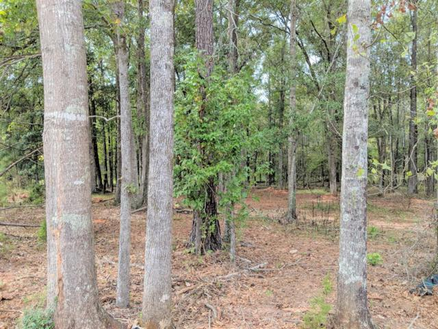 Lot 19 County Line Road, MIDLAND, GA 31820 (MLS #164593) :: Matt Sleadd REALTOR®
