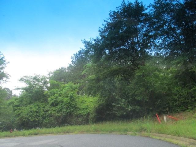LOT 9 Pintail Drive, CATAULA, GA 31804 (MLS #160056) :: The Brady Blackmon Team