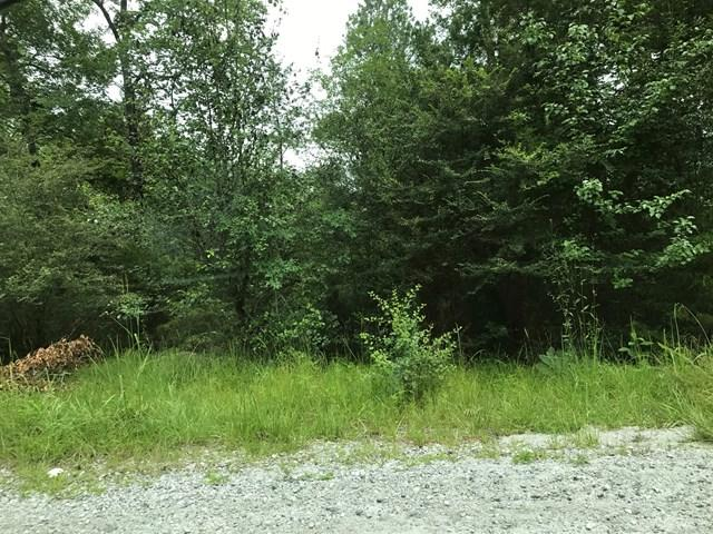 Lot 1 BlockA Pintail Drive, CATAULA, GA 31804 (MLS #160069) :: Haley Adams Team