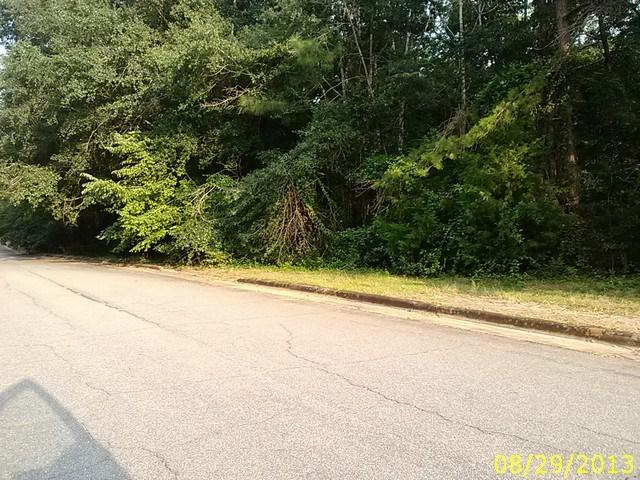 0 Westwood Drive, LUMPKIN, GA 31815 (MLS #161305) :: Haley Adams Team