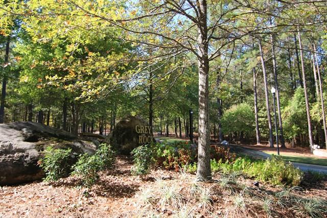 Lot 16C Old Gate Road, MIDLAND, GA 31820 (MLS #169005) :: Matt Sleadd REALTOR®