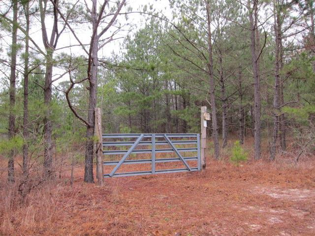 0 Highway 137, CUSSETA, GA 31805 (MLS #170495) :: Bickerstaff Parham