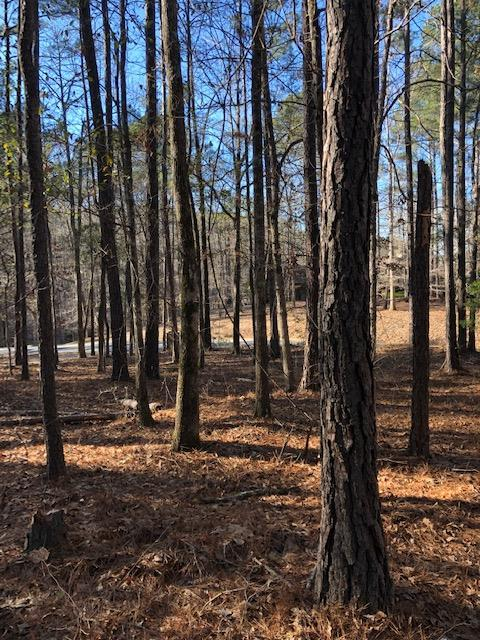 lot 159 Piedmont Lake Road, PINE MOUNTAIN, GA 31822 (MLS #170777) :: Matt Sleadd REALTOR®