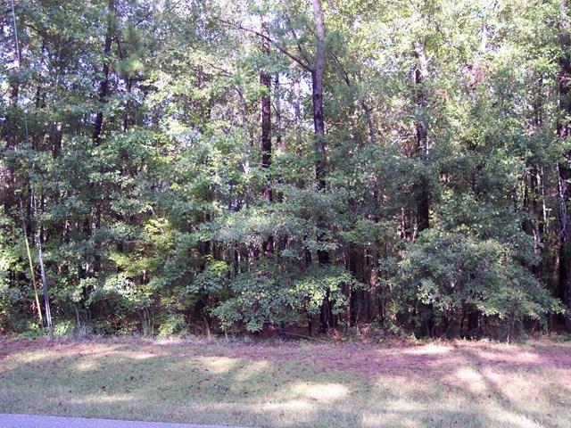 Lot 57 Laurel Ridge Lane, CATAULA, GA 31804 (MLS #171514) :: Bickerstaff Parham