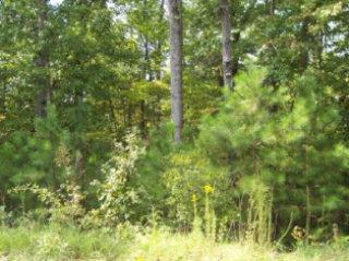 Lot 36 Mobley Road, HAMILTON, GA 31811 (MLS #171710) :: Bickerstaff Parham