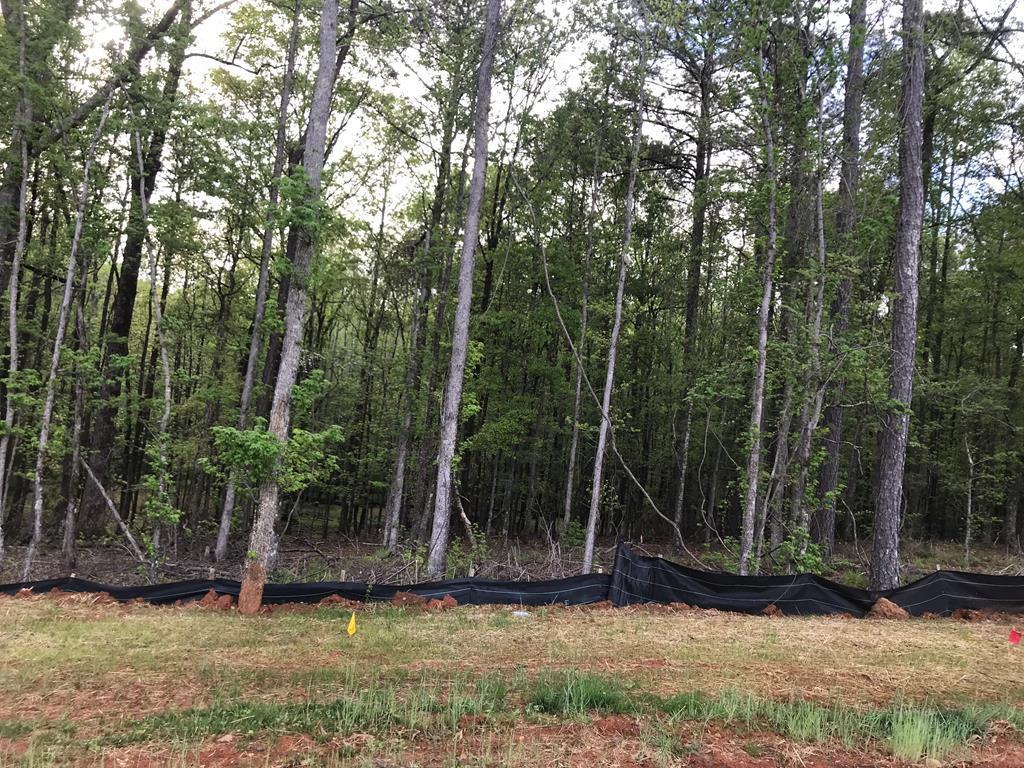 10400 Lot #2 County Line Road - Photo 1