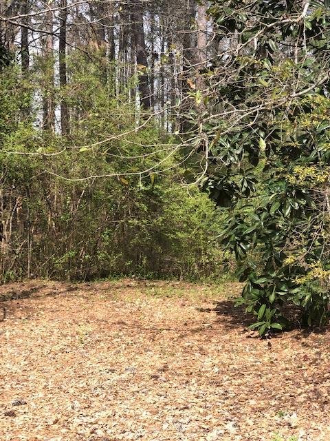 lot 56 White Oak Road, PINE MOUNTAIN, GA 31822 (MLS #172198) :: The Brady Blackmon Team
