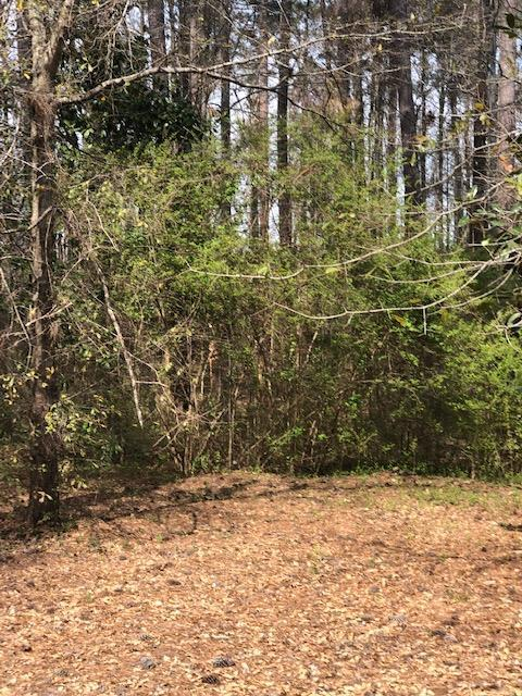 lot 57 White Oak Road, PINE MOUNTAIN, GA 31822 (MLS #172213) :: The Brady Blackmon Team