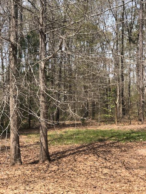 lot 62 White Oak Road, PINE MOUNTAIN, GA 31822 (MLS #172221) :: The Brady Blackmon Team