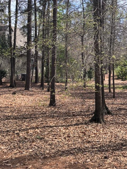 Lot 106 White Oak Road, PINE MOUNTAIN, GA 31822 (MLS #172224) :: The Brady Blackmon Team