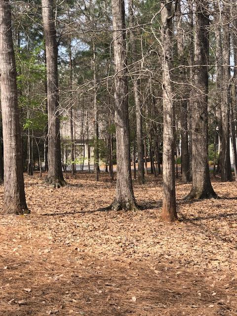 Lot 111 Dogwood Way, PINE MOUNTAIN, GA 31822 (MLS #172226) :: The Brady Blackmon Team
