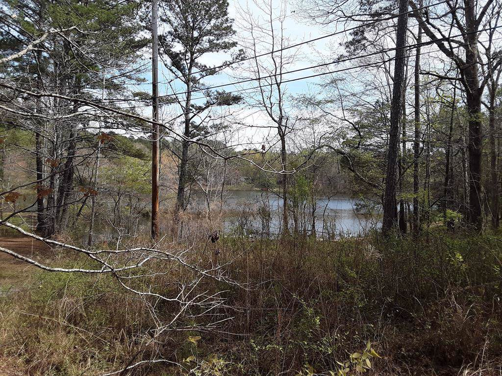 Lot 22,23,24 Lake Drive - Photo 1