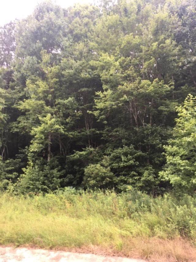 Lot 1 Ga Hwy 116, HAMILTON, GA 31811 (MLS #177596) :: The Brady Blackmon Team