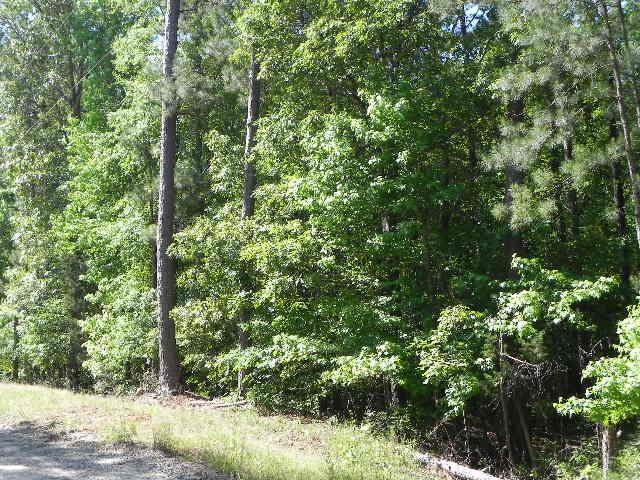 0 South Porter Road, SHILOH, GA 31826 (MLS #178912) :: Kim Mixon Real Estate