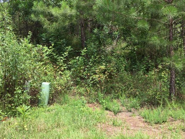 Lot 116 Earthwood Court, FORTSON, GA 31808 (MLS #179848) :: Kim Mixon Real Estate