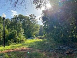 Lot 16 County Line Road - Photo 1