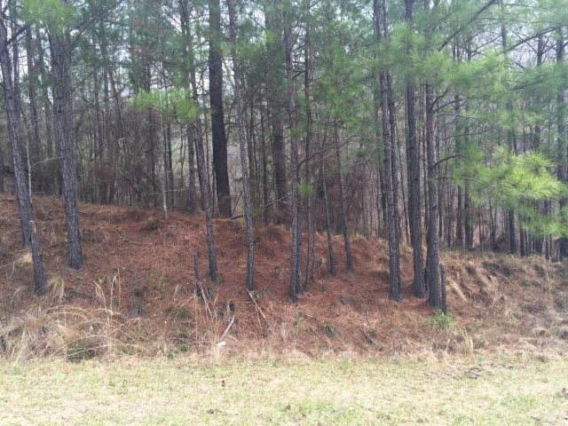 7635 Rolling Bend Road - Photo 1