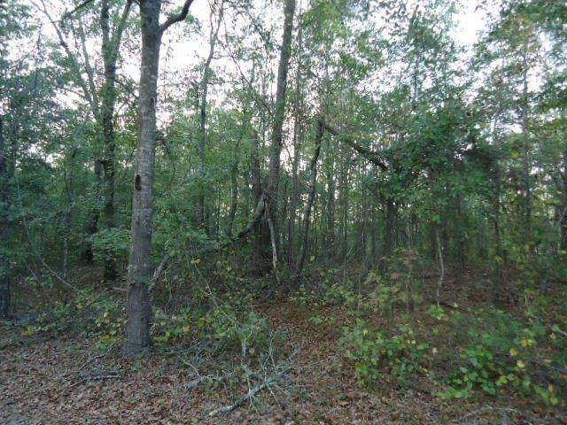 25 Box Springs Spur, BOX SPRINGS, GA 31801 (MLS #181937) :: Kim Mixon Real Estate