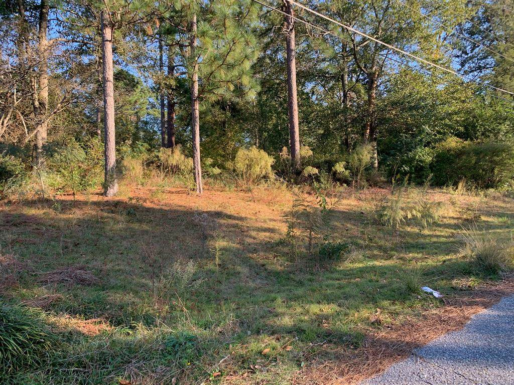 0 Lee Road 0485 - Photo 1