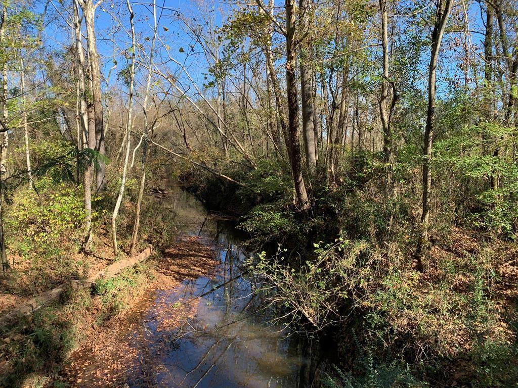00 Alabama Road - Photo 1