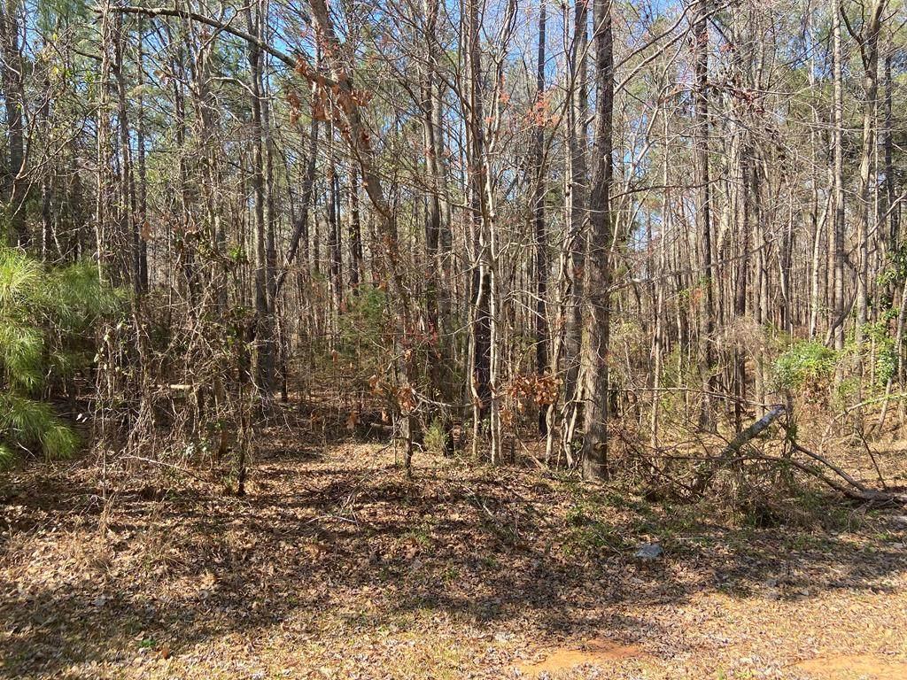 0 Wildwood Plantation - Photo 1