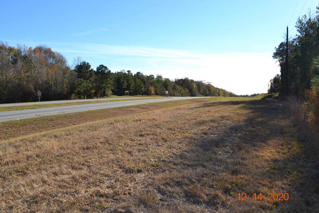 3732 Highway 431 South - Photo 1