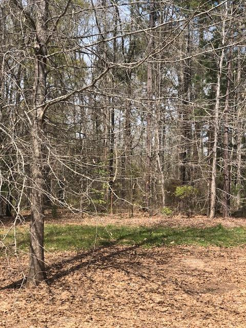 Lot 60 White Oak Road, PINE MOUNTAIN, GA 31822 (MLS #172219) :: The Brady Blackmon Team