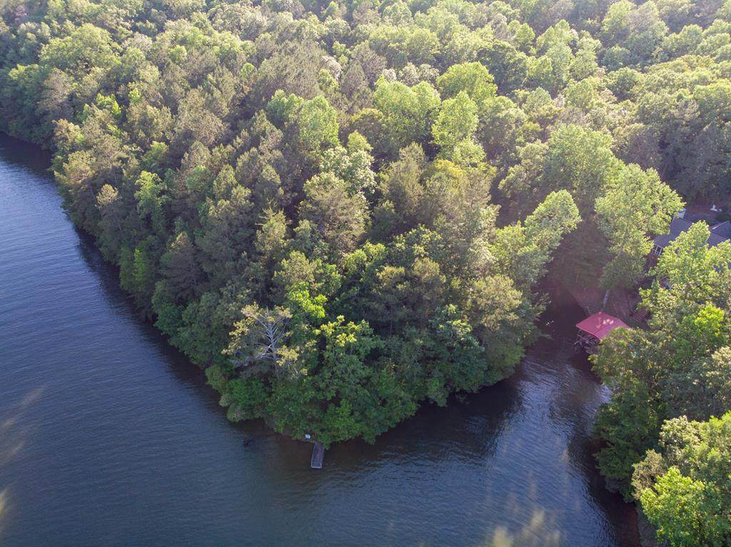 0 Wedowee Creek View Drive - Photo 1