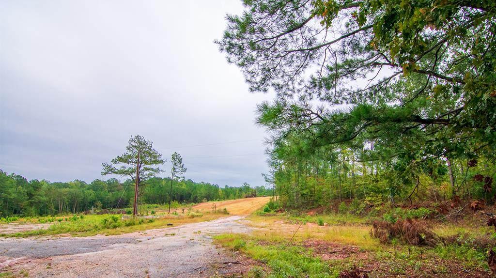 6890 Lickskillet Road - Photo 1