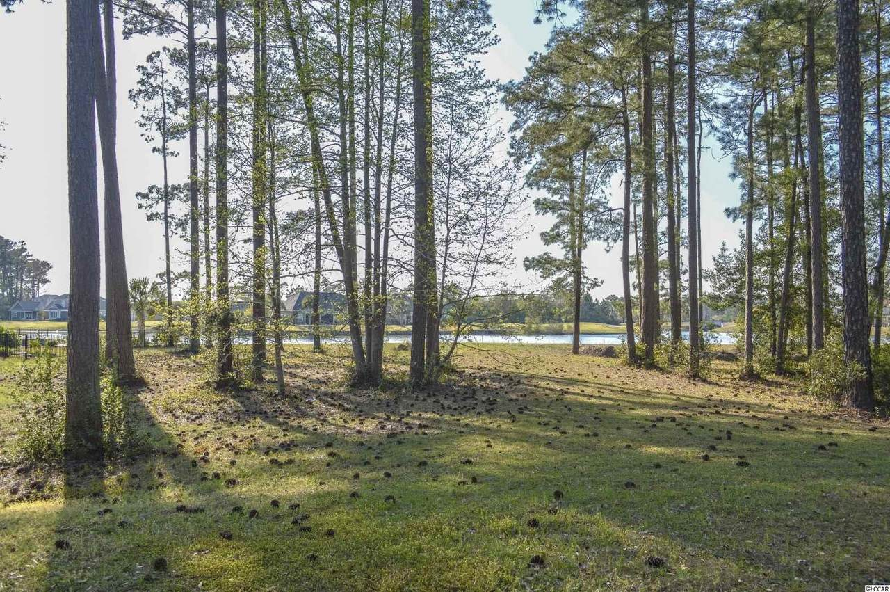 1435 Whooping Crane Dr. - Photo 1