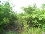 Lot A-2 Highway 544 - Photo 2
