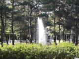 9300 Devaun Pointe Circle - Photo 12