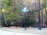 349 Cypress Flat Ct. - Photo 8