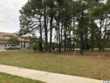 1109 Whooping Crane Dr. - Photo 11