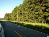 TBD Highway 905 - Photo 4