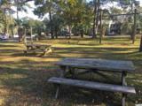 435 Salt Marsh Circle - Photo 23