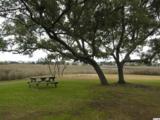 435 Salt Marsh Circle - Photo 24