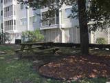 305 Hillside Dr. - Photo 26