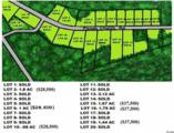 TBD Lot 10 Pisgah Church Rd. - Photo 4