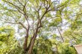 107 Oak Dr. S - Photo 26