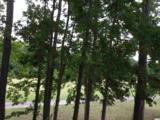 1294 River Oaks Dr. - Photo 17